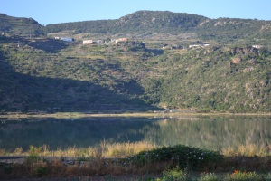 Colombini- Week One Blog Photo - Copy